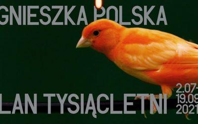Plan Tysiącletni   Agnieszka Polska